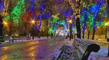 Новогоднее световое оформление парка